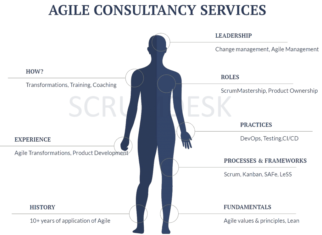 ScrumDesk Agile Consultancy Services 2 (transparent - web))