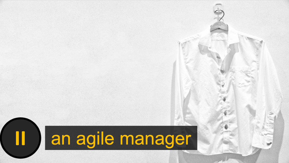 training agile manager